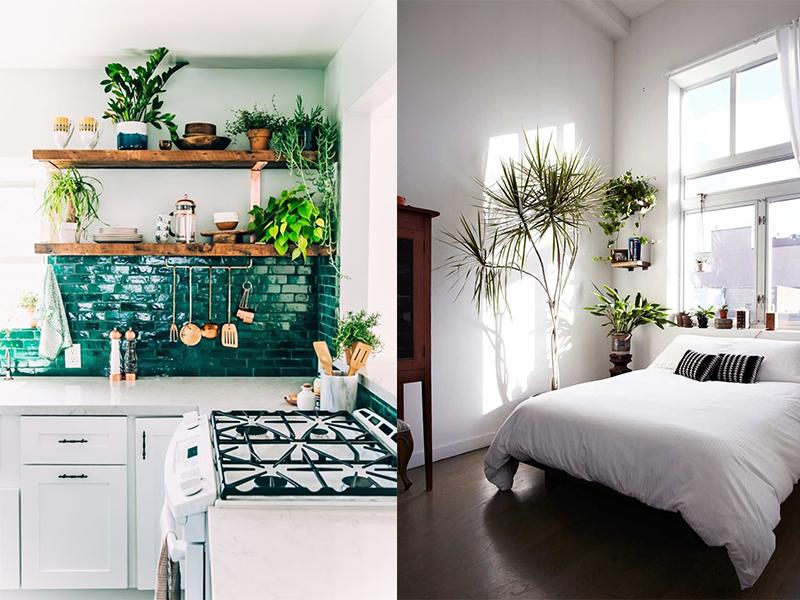 mueble cocina moderno plantas